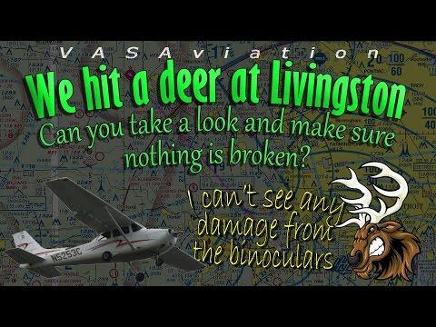 [REAL ATC] Cessna C172 hits a deer at Livingston KOZW