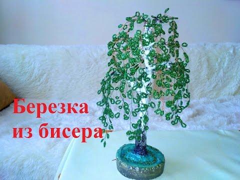 Береза дерево -