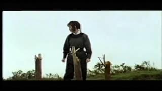Wing Chun Kung Fu History Film by Cecelia Wong