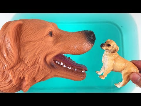 Animals Wild  Toys Baby find Mom -Learn Animals Names and Sounds Education Toys for Kids