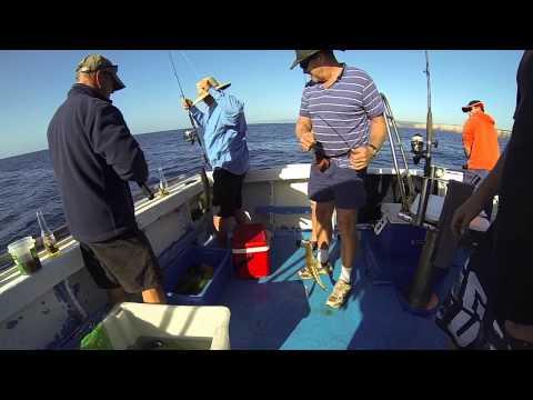 Deep Sea Fishing Charters Cronulla NSW