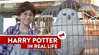 Harry Potter In Real Life - Movies In Real Life (Episode 8)