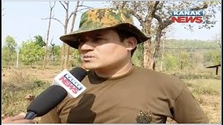 Security Personnel Intensify Combing Operation In Maoist Domin…