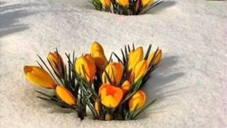 Весна и Масленница в России