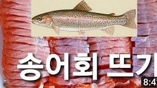 송어회 뜨기&누…
