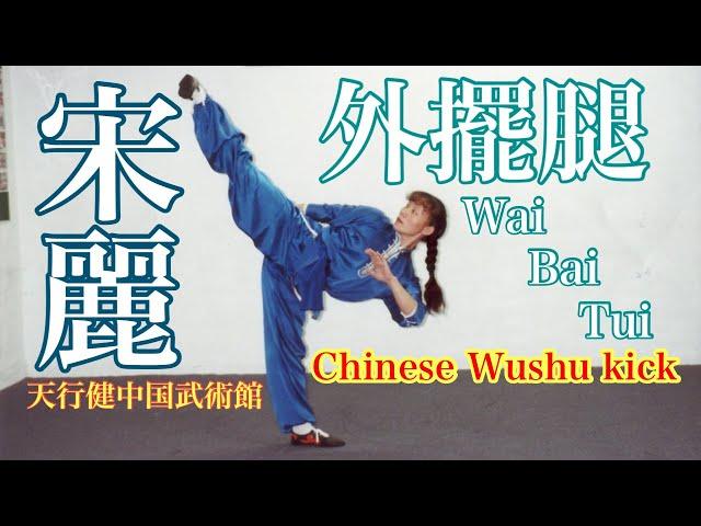 宋麗先生 Wai-Bai-Tui 外擺腿 Chinese Wushu kick