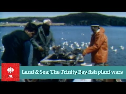 Land & Sea: The Fish Plant Wars Of Trinity Bay - Full Episode