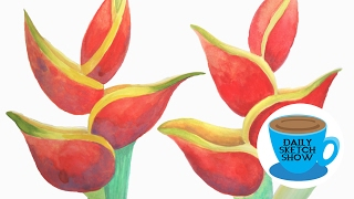 Daily Sketch Show - Heliconia Studies in Gouache