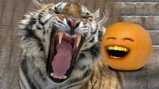 Annoying Orange - Through Time #4