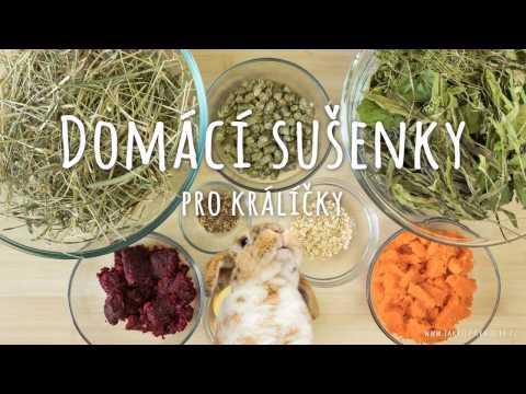 Domácí sušenky pro králíčky - recept