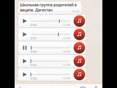 Прикол из Whatsapp