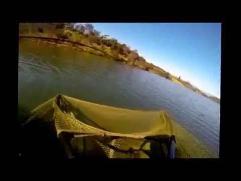Specimen Angling SA- Limpopo province part 1