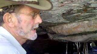 Mt Borradaile Serpant - Amazing Video!