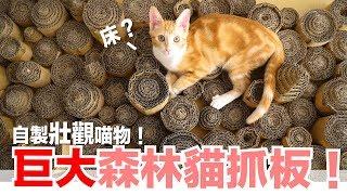 自製巨大森林貓抓板!【好味喵物】EP1