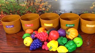 Learn Colors with Fruits & Veggies!