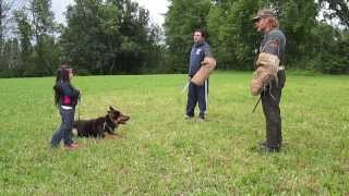 5 Year Old Year Old Getting Protected By Her German Shepherd From 2 Bad Guys
