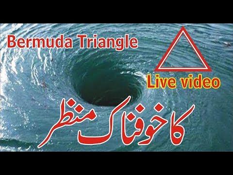 Bermuda triangle Live video View 2017