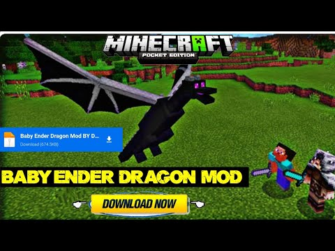 HOW TO DOWNLOAD BABY ENDER DRAGON MOD IN MINECRAFT PE (BEDROCK) || IN MALAYALAM || DAMN BROS ||
