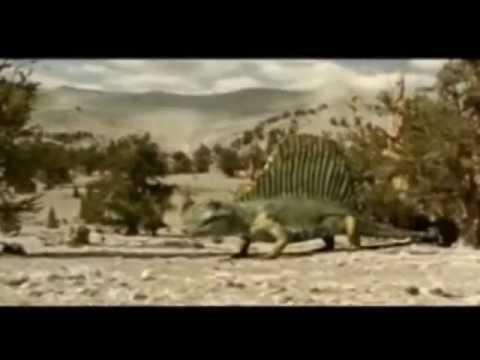 Animação - Evolução.wmv