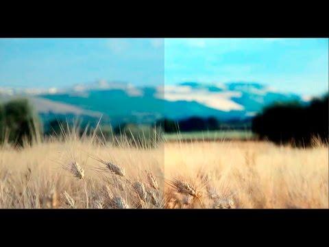 Простой и быстрый способ улучшить качество видео изображения в Adobe Premiere Pro CC. Урок