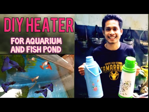 How To Make A DIY Heater For Aquarium And  Fish Pond Free From Electricity Consumption
