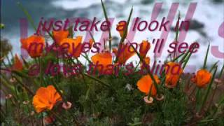 I'd Lie For You (and That's The Truth) Lyrics Meatloaf