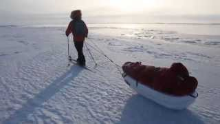 Sebastian Copeland: One Step at a Time