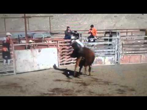 Kevin Foster Bullfighter