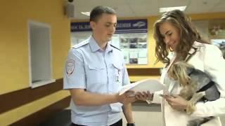 Госуслуги ГИБДД - регистрация автомобиля