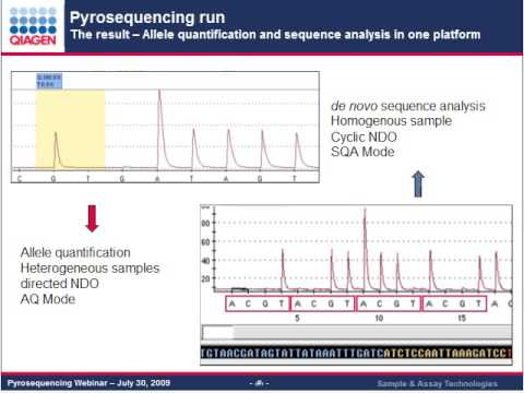Pyrosequencing — technology for microbial identification ...