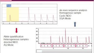 Pyrosequencing —  technology for microbial identification and resistance screening assays