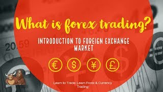 what is forex trading introduction the diary of a trader diary intro