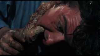 The Evil Dead (1981) Best Scenes: Evil Torments Ash