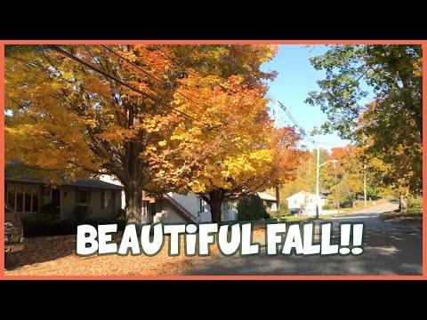 Beautiful Fall Drive in Massachusetts