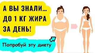 постер к видео Диета 6 лепестков Меню Рецепты Правила. Избавляемся до 1 кг ЖИРА за ДЕНЬ!!!