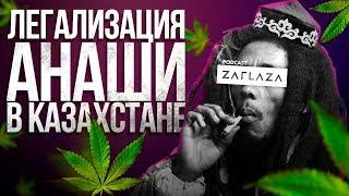 Нужно ли в Казахстане легализовать анашу? / PZ#2