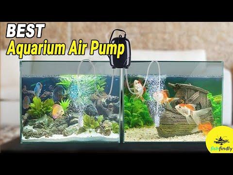 Best Aquarium Air Pump In 2020 – Top High Performance Pump For Aquarium