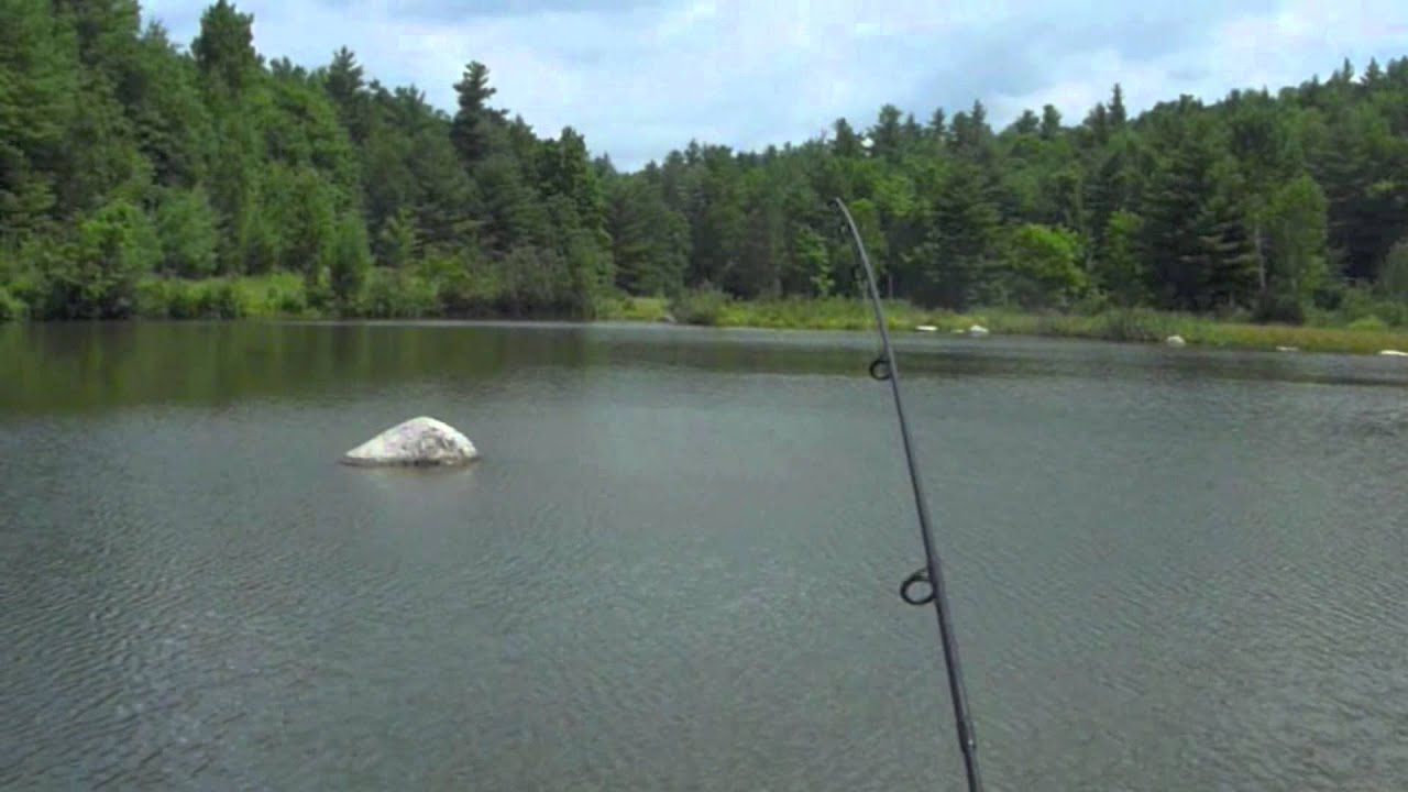 Powerbait trout fishing in a farm pond youtube for Fishing with powerbait