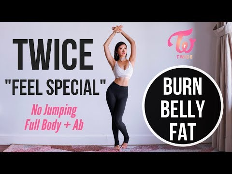"""TWICE """"Feel Special"""" Full Body + Ab Workout To Burn Belly Fat (No Jumping!) ~ Emi"""