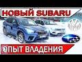 Купил Subaru Forester - честный отзыв владельца | ТИГУАН vs Субару Форестер 2021 видео