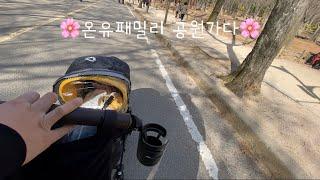 [ 육아브이로그 #14 ] 온유패밀리 산책가다? 벚꽃 …