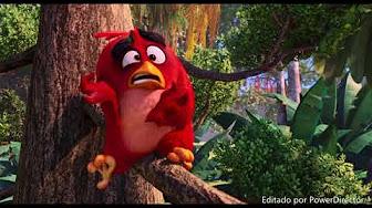 Angry birds completa
