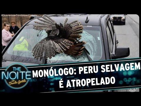 Monólogo: Peru selvagem é atropelado | The Noite (04/04/17)