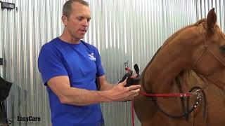 the Easyboot Cloud