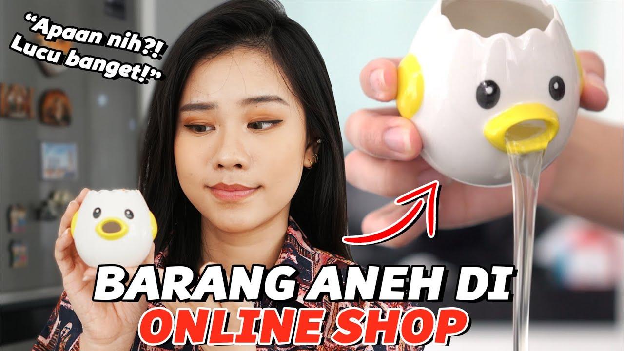 BELANJA BARANG-BARANG ANEH DI OLSHOP! Part. 5