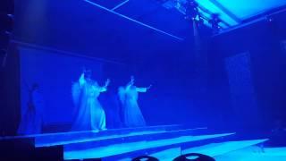 Тарзан-шоу Владивосток
