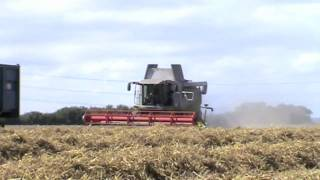 Wheat Harvesting on Romney Marsh U.K *HD*