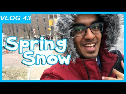 Interview with School Apply Representative | Vlog 43