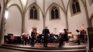 Fantaisie pour Alto et orchestre à cordes, J.N. Hummel par Syméon Newell