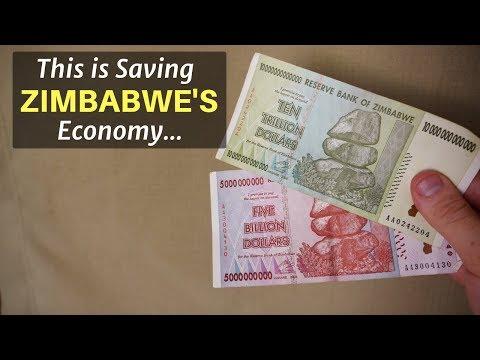 This Is Saving Zimbabwe's Economy...